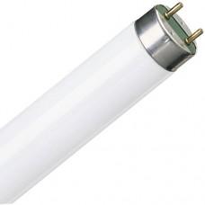 Лампа люминесцентная Osram Т8 18W/640 теплая