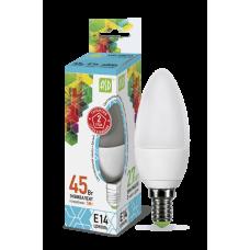 Лампа светодиодная ASD E-14 свеча 5W холодная
